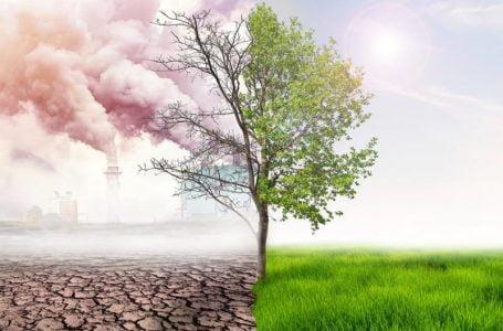 El cambio climático no ha frenado pese a la pandemia de COVID-19